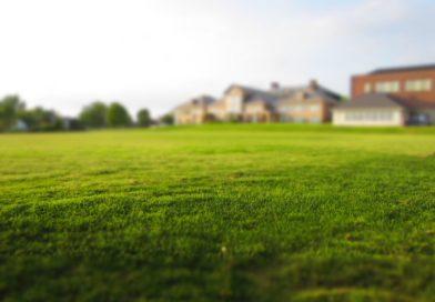 Prøv en robotplæneklipper til haven